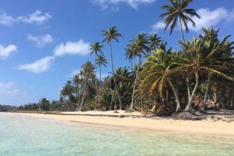 martinique plage turquoise et cocotier blog voyage