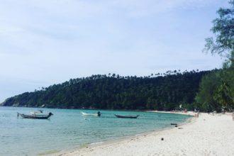 plage thailande cocotier
