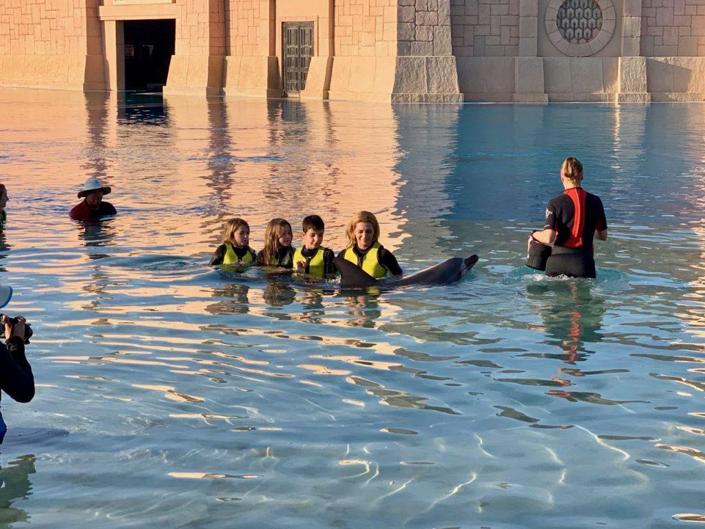 famille caressant un dauphin