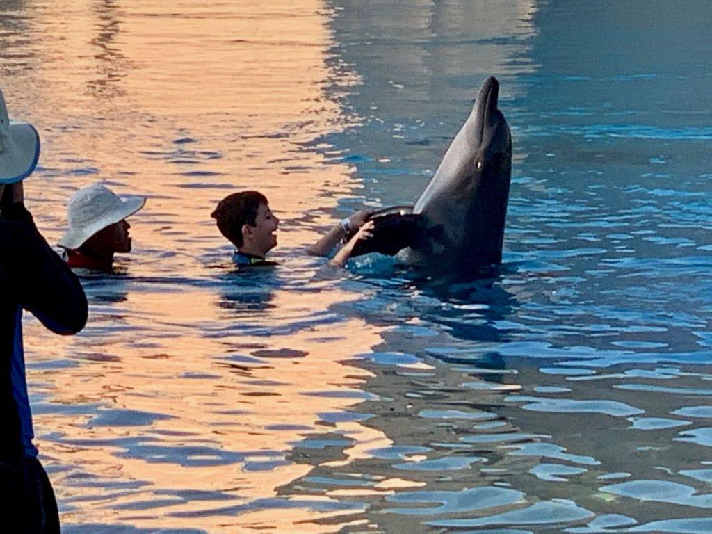 jeune garçon dansant avec un dauphin